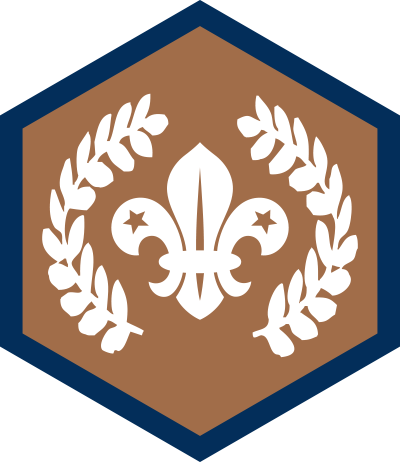 chief-scouts-award-bronze-beavers-rgb-png